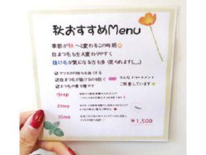 倉敷のマツエクサロンCoRte. eye leaf店の秋おすすめMENU